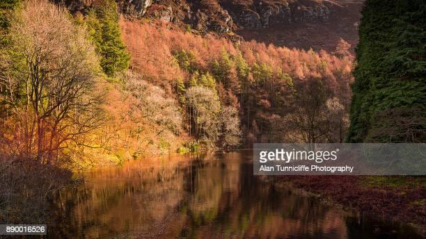 Autumn in the Elan valley