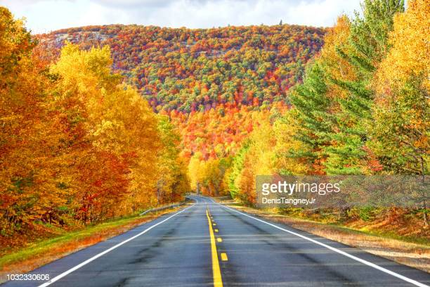 autumn in the in the adirondacks - autumn stock pictures, royalty-free photos & images
