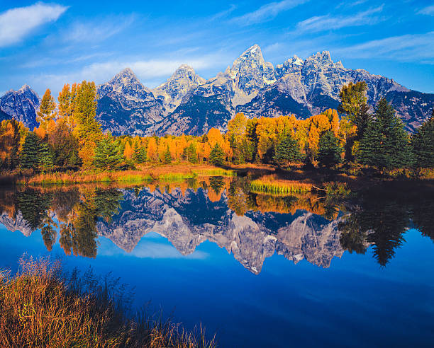 Autumn In The Snake River Valley Grand Teton National Park Wall Art