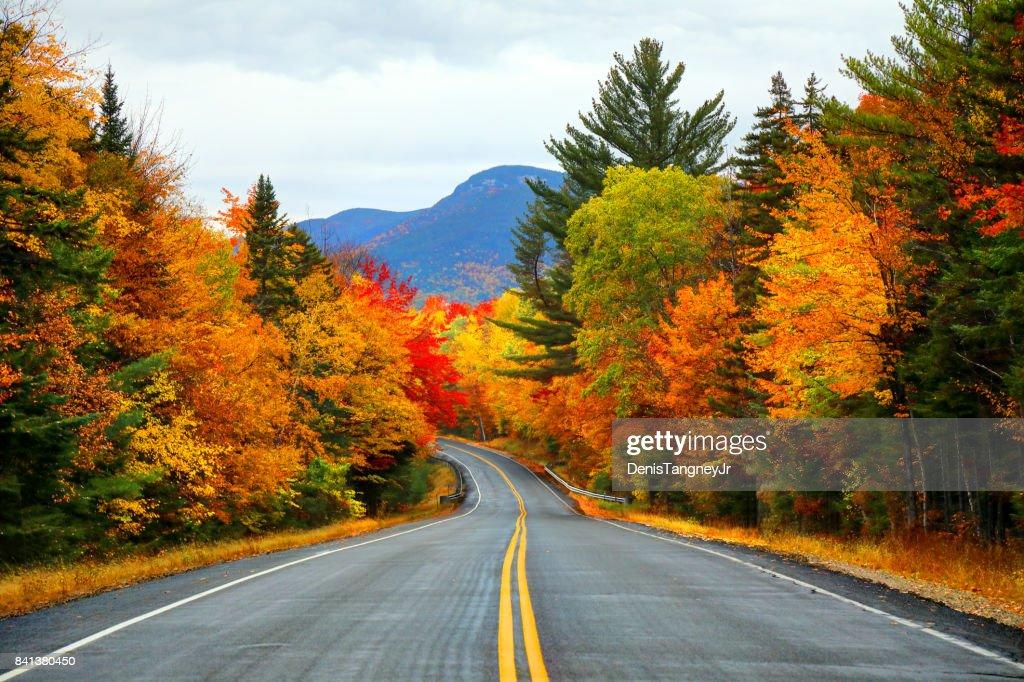 Autumn in the White Mountains of New Hampshire : Stock Photo