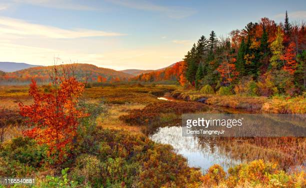 autumn in the white mountians region of new hampshire - national forest stock pictures, royalty-free photos & images