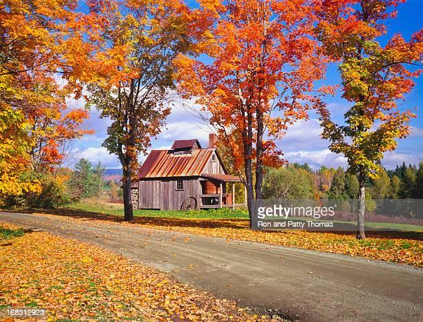 Autumn in Vermont  (P)