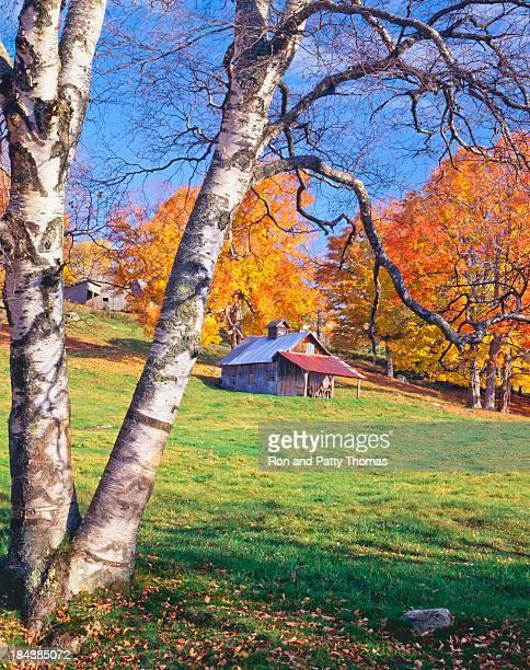 Automne dans le Vermont