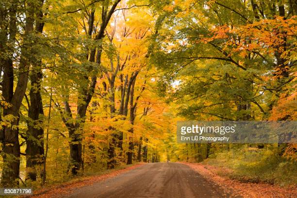 Autumn in Vermont with country road