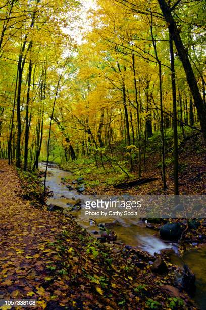 autumn in wisconsin - iron_county,_wisconsin stock pictures, royalty-free photos & images