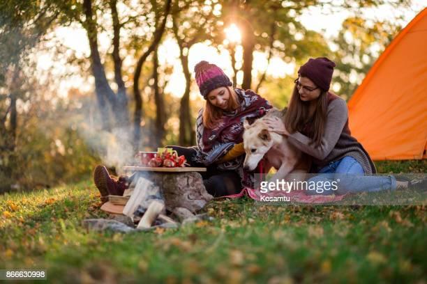 秋のキャンプのための正しい時であります。