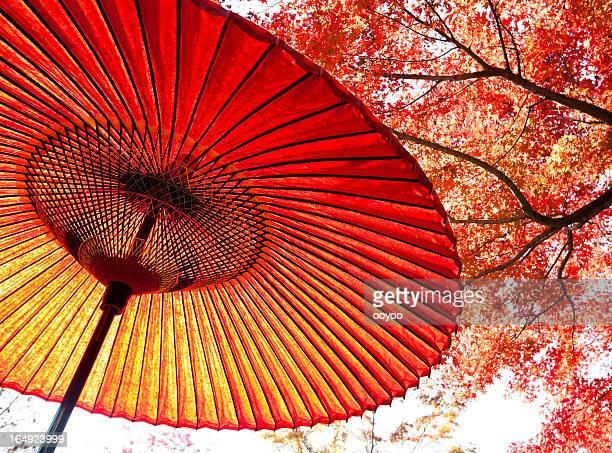 秋日本の傘