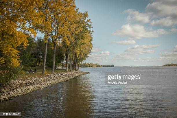 autumn lakefront landscape - angela auclair stock pictures, royalty-free photos & images