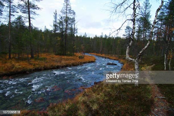 autumn landscape between rautulampi and lankojärvi lake - september stockfoto's en -beelden