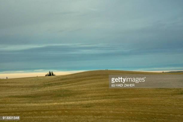 Autumn Landscape | Edmonton | Alberta | Canada