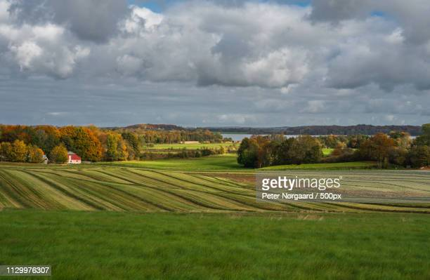 autumn landscape i - funen stock pictures, royalty-free photos & images
