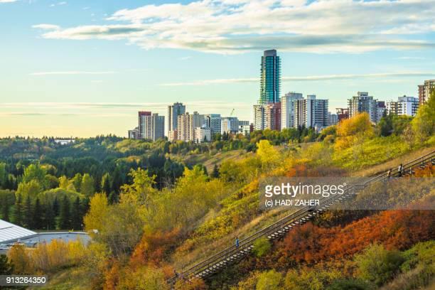 Autumn Landscape in Edmonton river valley | Alberta | Canada