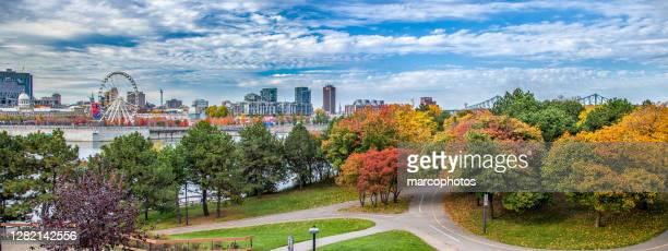 autumn landscape in montreal. - montréal stock pictures, royalty-free photos & images