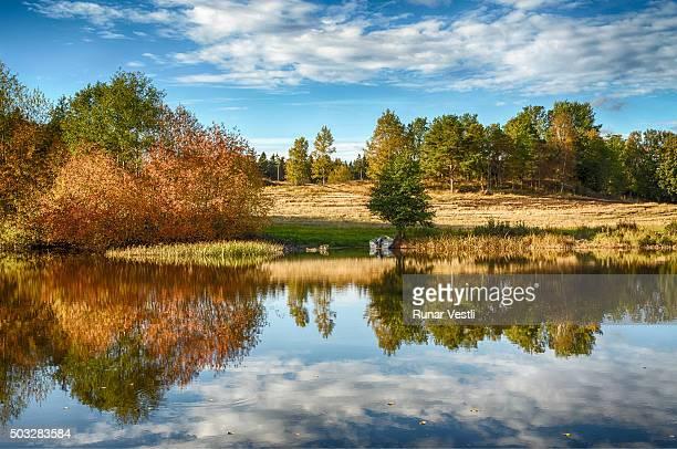 Autumn landscape in vivid colors