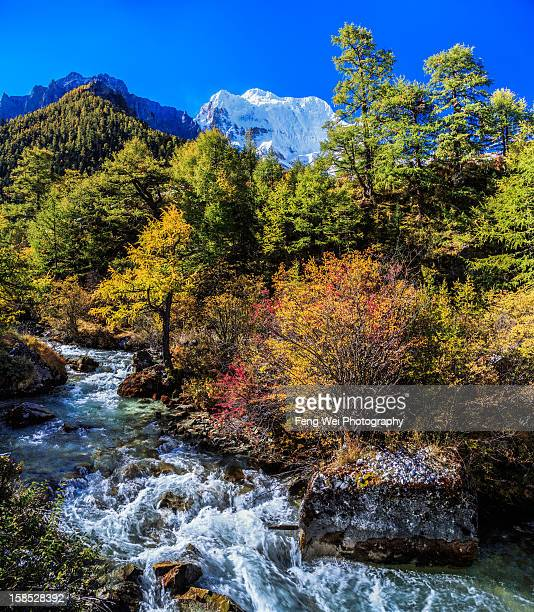 Autumn landscape in Yading, Sichuan, China