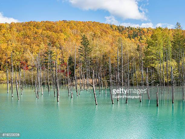 Autumn landscape of Blue lake
