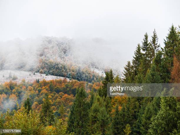 autumn landscape with cloudy cold weather in mountains covered with snow - ukraine stock pictures, royalty-free photos & images