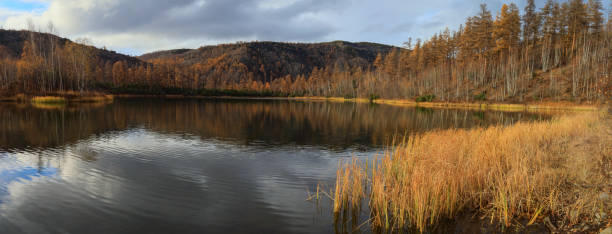 Autumn landscape with forest and lake, Esso, Kamchatka Krai, Russia