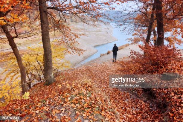 Autumn landscape with man looking down at Edersee reservoir, Germany