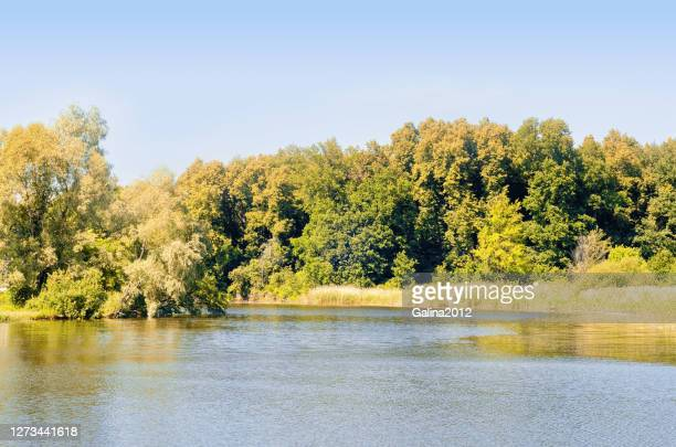autumn landscape with river bank yellowing