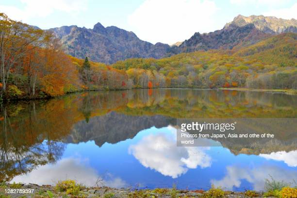 autumn leaf color of kagami-ike (mirror pond), togakushi plateau, central japan - 長野市 ストックフォトと画像