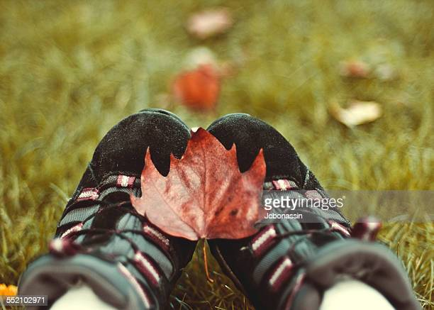 autumn leave on a shoes - jcbonassin stock pictures, royalty-free photos & images
