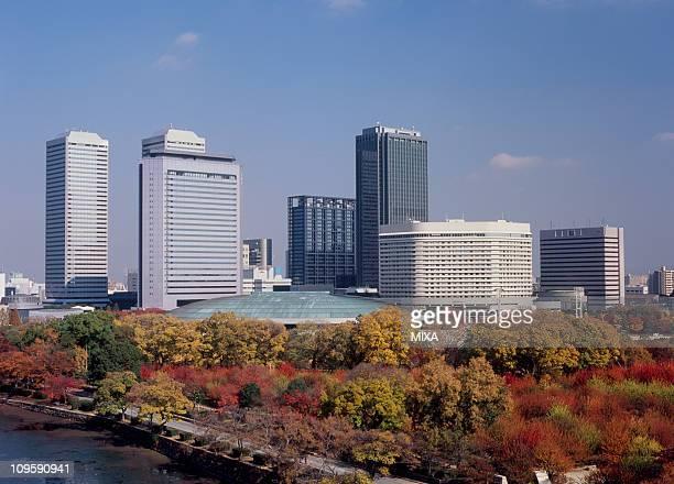 autumn leaves and osaka business park, osaka, osaka, japan - 大阪ビジネスパーク ストックフォトと画像