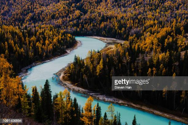 autumn leaves and view of xinjiang autonomous region, china - tien shan mountains stock pictures, royalty-free photos & images