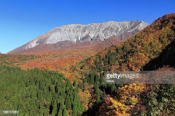 Autumn Leaves at Mount Daisen, Kofu, Tottori, Japan
