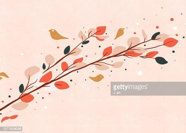 autumn leaves background. - september stock-fotos und bilder