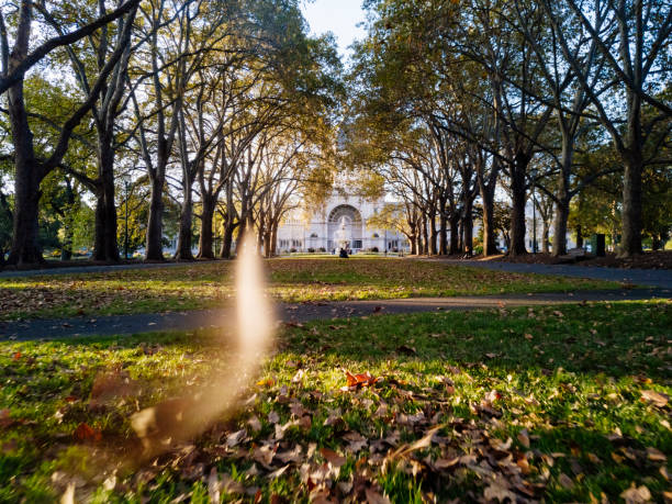 Autumn leaves flying in the foreground, at the Carlton gardens, Melbourne