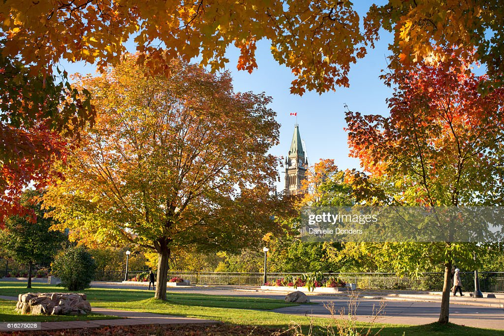 Autumn leaves framing Canada's Parliament Buildings : Stock Photo