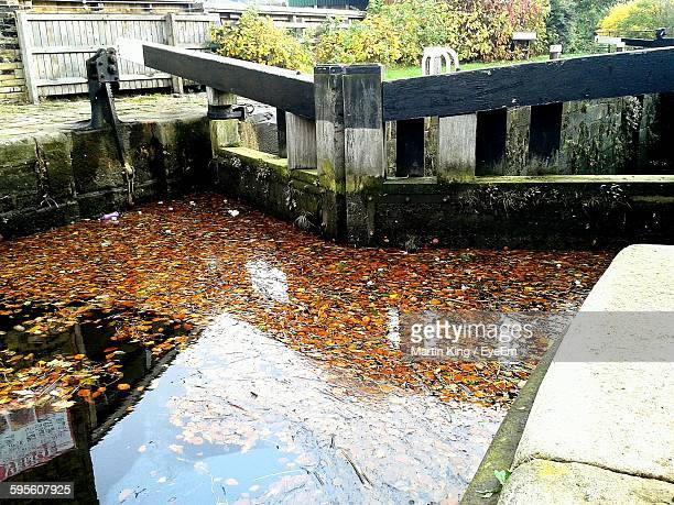autumn leaves in canal - bradford england stock pictures, royalty-free photos & images
