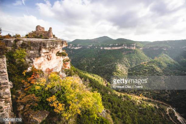 autumn leaves near siurana castle - katalonien stock-fotos und bilder
