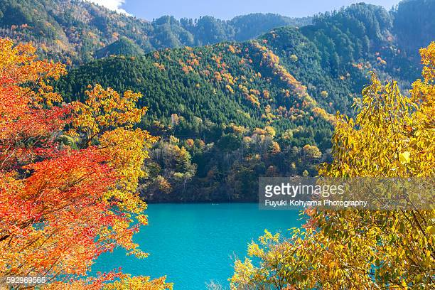Autumn leaves of Lake Ontake, Nagano, Japan