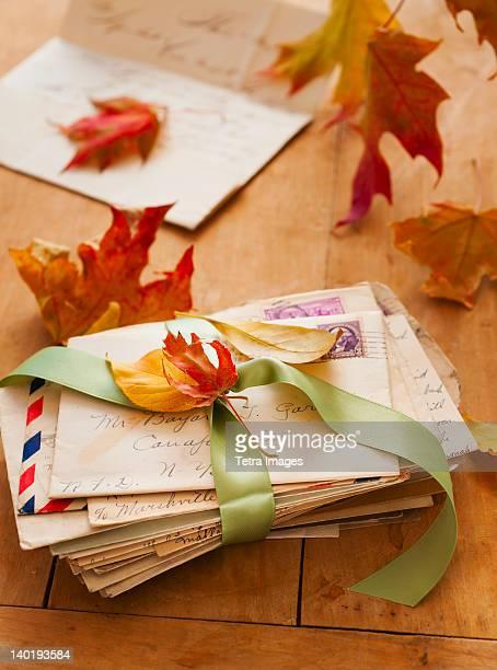 Autumn leaves on letters, studio shot