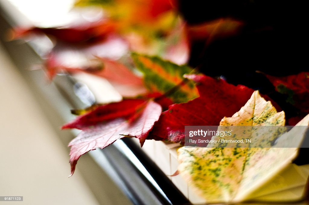Autumn Leaves On Piano Stock Photo - Getty Images