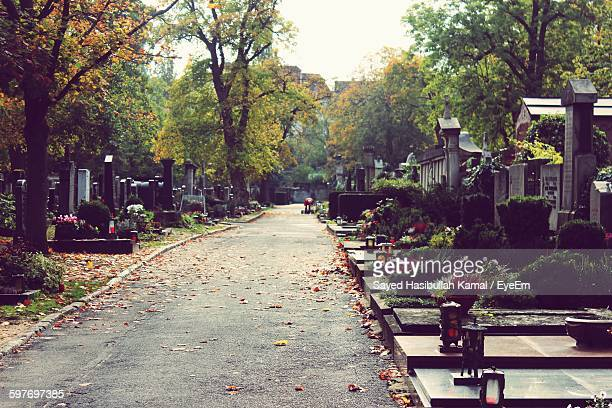 Autumn Leaves On Walkway Amidst Tombstones