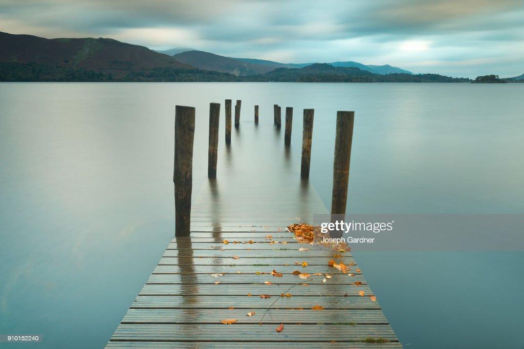 Autumn Leaves : Stock Photo