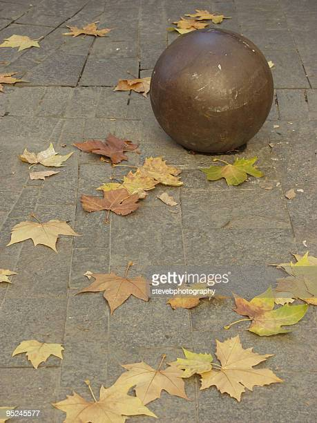 autumn leaves - stevebphotography stock pictures, royalty-free photos & images