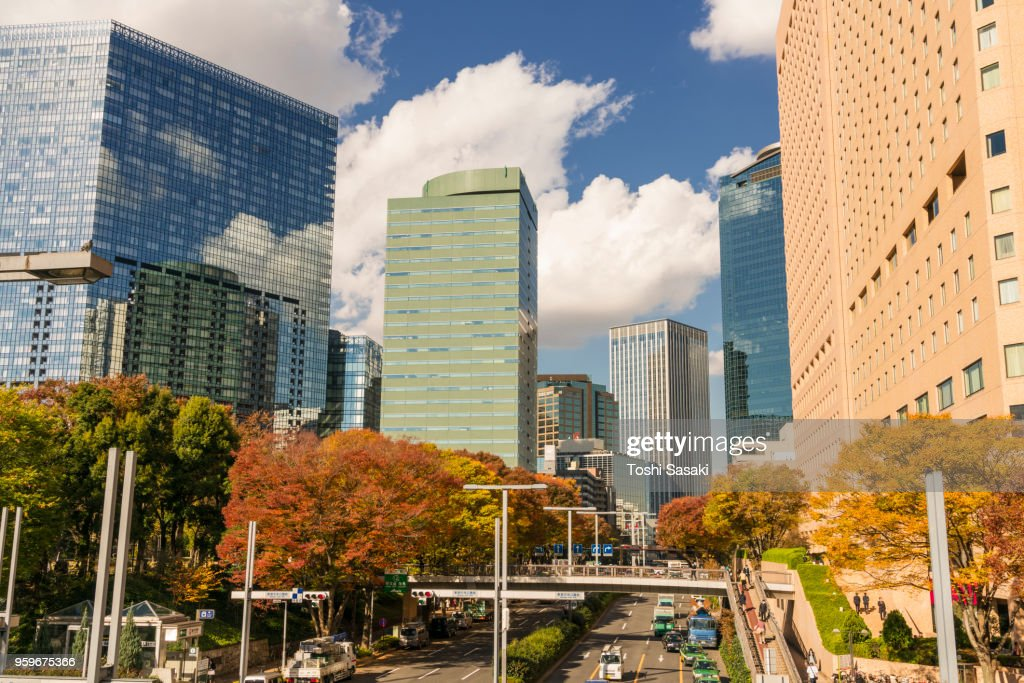 Autumn leaves trees stand among the Shinjuku Subcenter high-rise buildings along street at Nishi-Shinjuku, Tokyo Japan on November 24 2017. City traffic goes through under the elevated walkway. : Stock-Foto