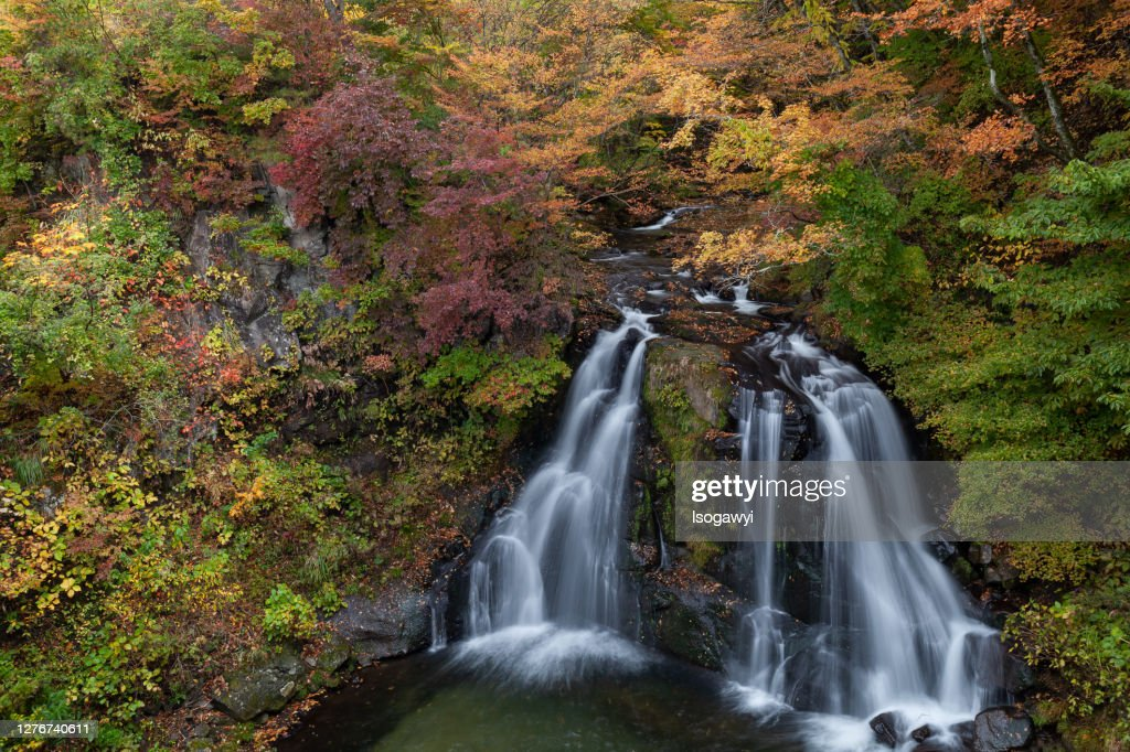Autumn Leaves Waterfalls : ストックフォト