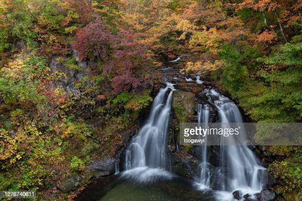 autumn leaves waterfalls - isogawyi ストックフォトと画像