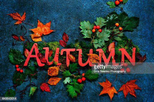 Autumn lettering with maple leaves