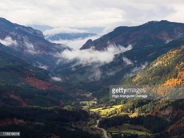 autumn lights in belagua valley - comunidad foral de navarra fotografías e imágenes de stock