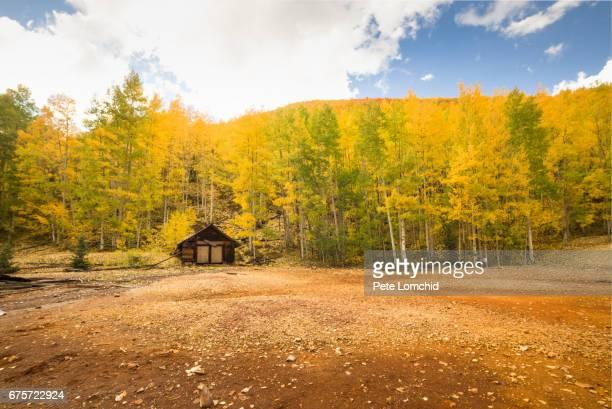 Autumn log cabin, Colorado