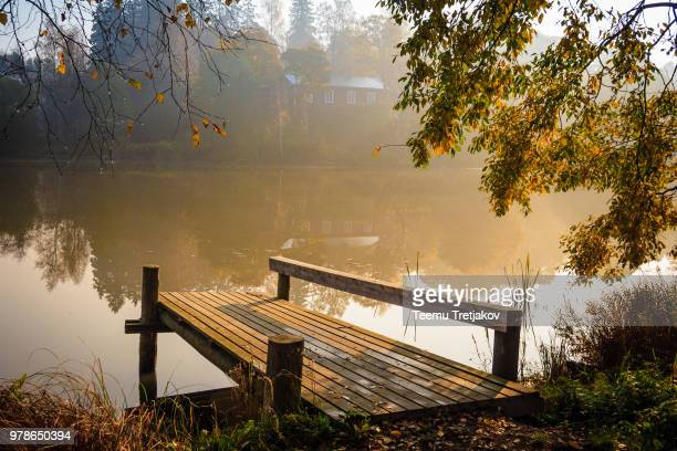 autumn mist - teemu tretjakov stock pictures, royalty-free photos & images