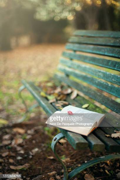 autumn mood - september stock pictures, royalty-free photos & images