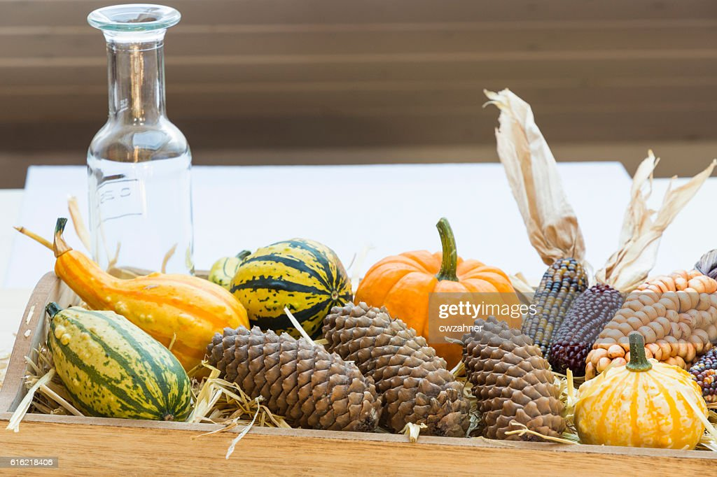 Autumn mood with decorative pumpkins : Stock Photo