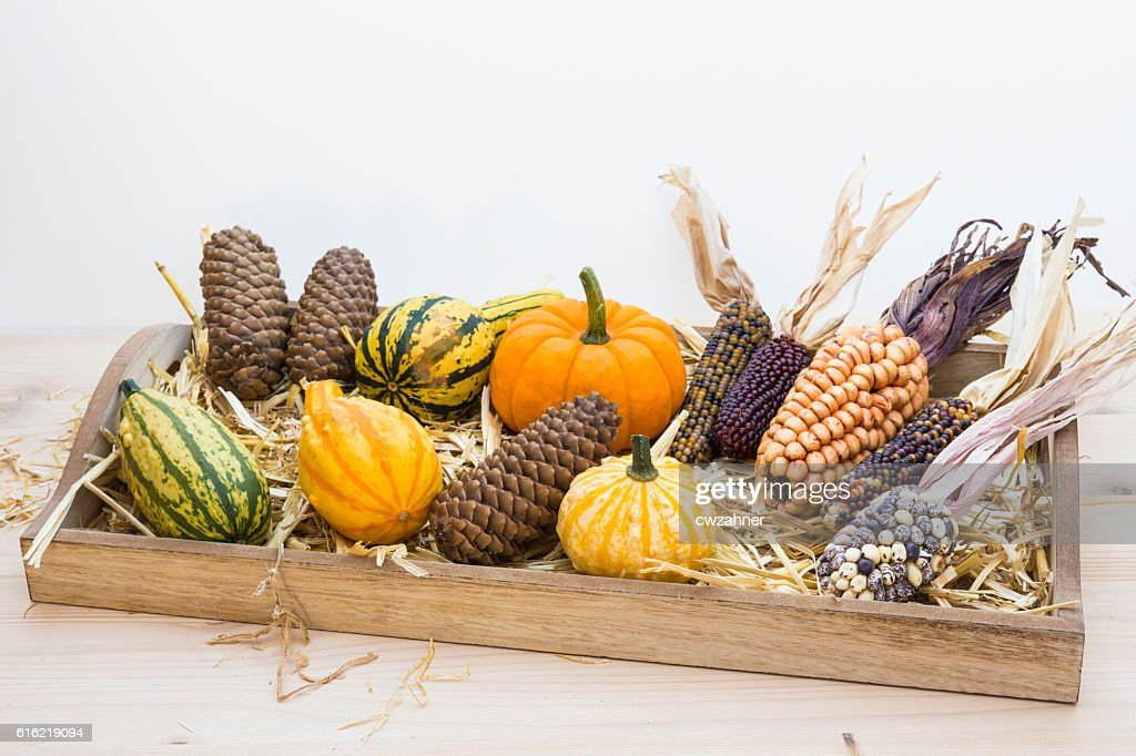 Autumn mood with decorative pumpkins : Stock-Foto